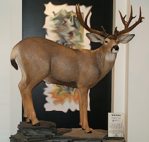 wood-carving-mule-deer-thumb